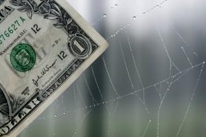 DollarBillInSpiderWeb